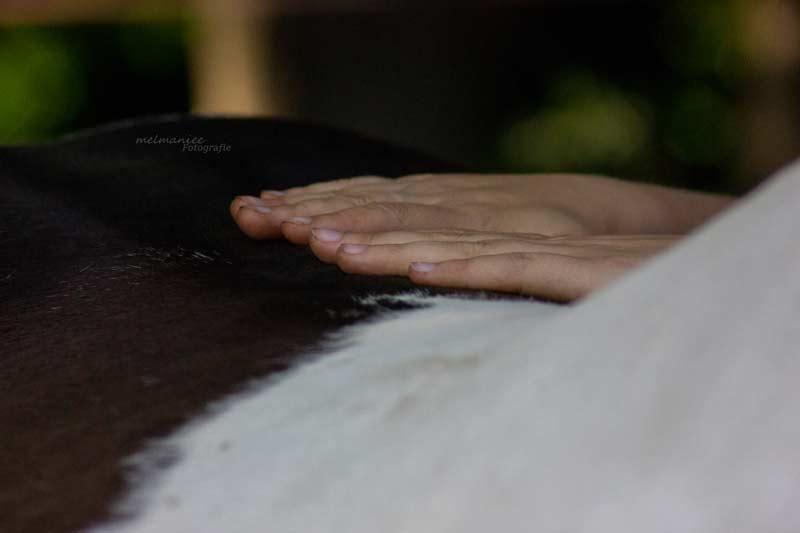 Faszientherapie Rücken
