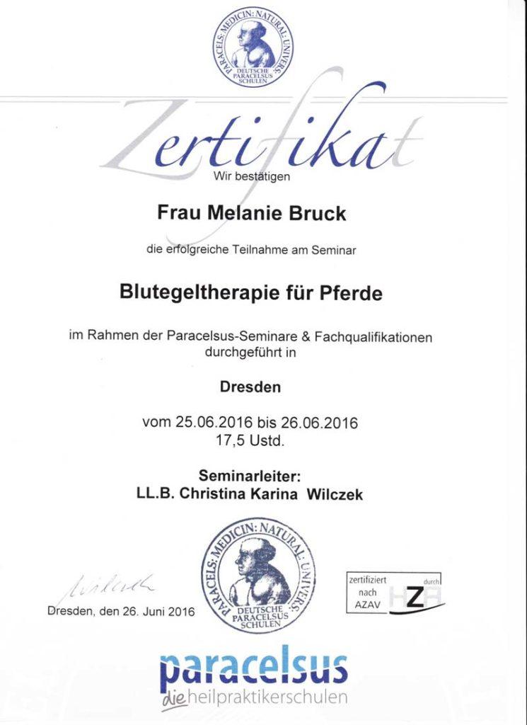 Zertifikat Blutegeltherapie