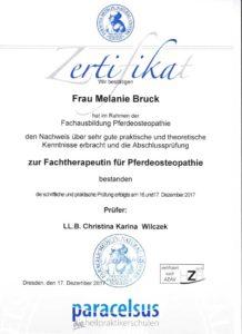 Zertifikat Pferdeosteopathie